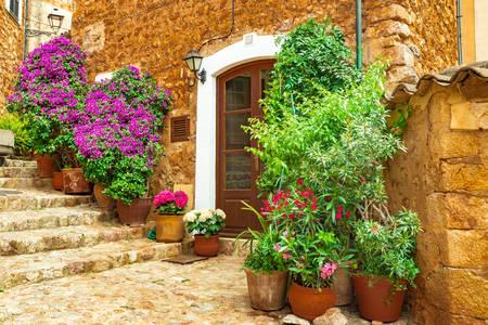 Mooie bloemen in huis
