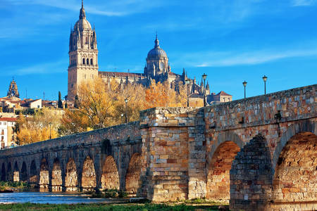 View of the Roman Bridge and the New Cathedral in Salamanca