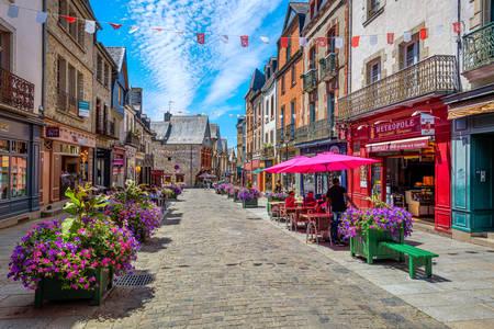 Pedestrian street in Vitre