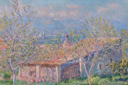 """Claude Monet: """"The Gardener's House in Antibes"""""""