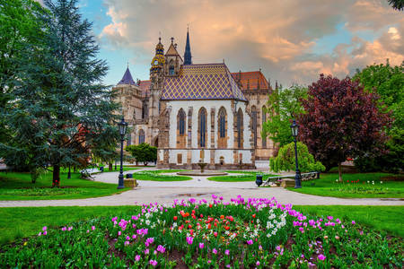 Cathedral of St. Elizabeth of Hungary