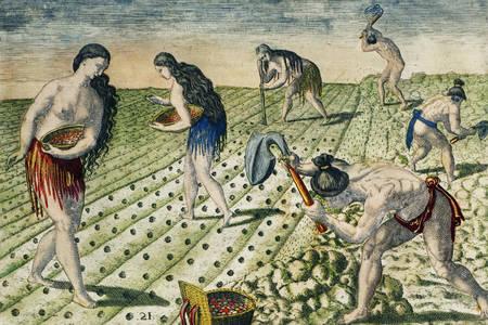 """Theodore de Brie: """"Obrábanie pôdy"""""""