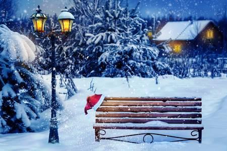 Скамейка в снежном лесу