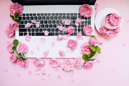 Roses on laptop keyboard