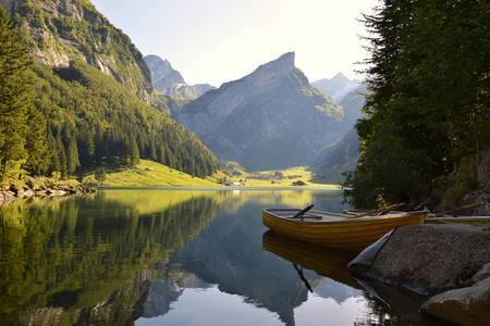 Βουνά της Ελβετίας