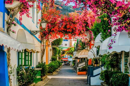 Strada din Puerto de Mogan