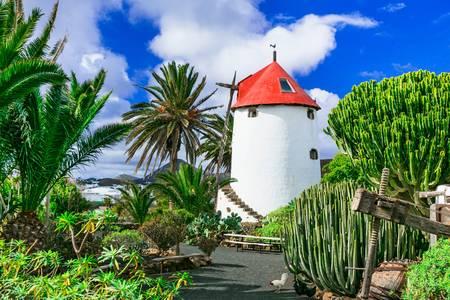 Teren wyspy Lanzarote