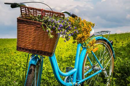 Велосипед с корзиной цветов