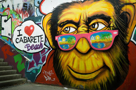 Monkey in pink glasses