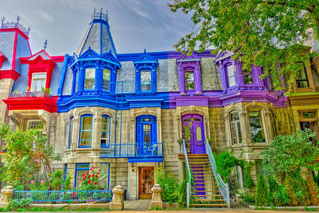 Victorian colorful houses