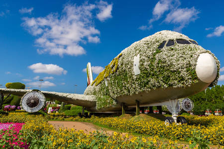 Passenger plane made of flowers