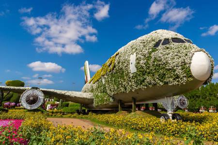 Samolot pasażerski wykonany z kwiatów