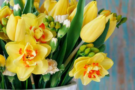 Bukiet żonkili i tulipanów