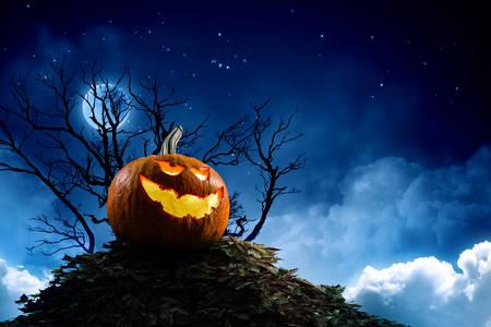 Pumpkin in the moonlight