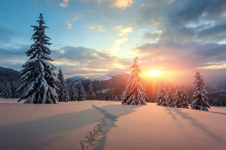 Sunset in the Carpathians