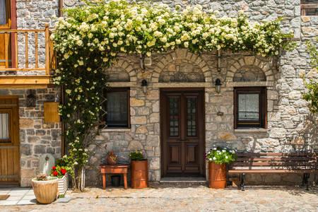 Lockige Rosen an der Fassade des Hauses