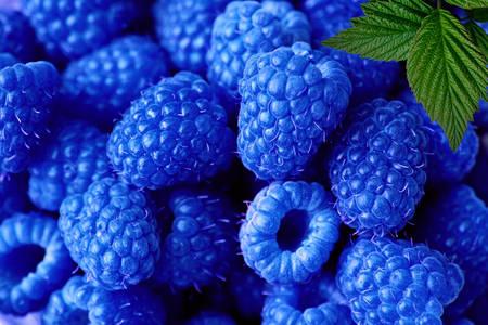 Блакитна малина