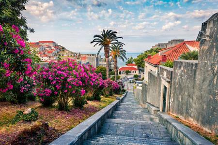 Улиците на Дубровник