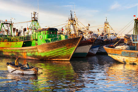 Fishing boats in the port of Essaouira