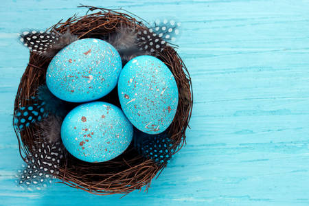 Easter eggs in a bird's nest