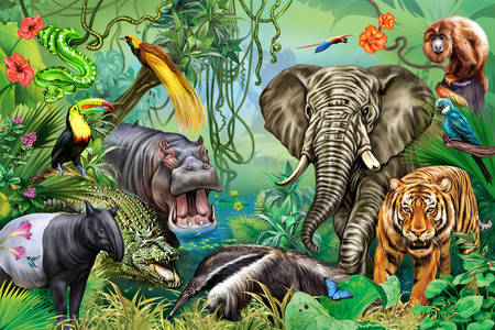 Animales de la selva africana