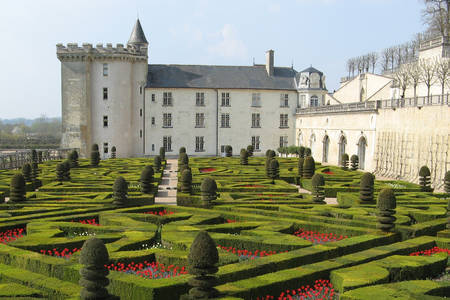 Zamek Villandry