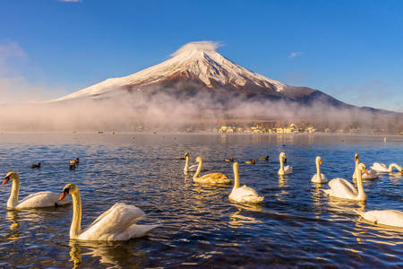 Mount Fuji view from Lake Yamanaka