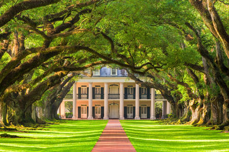 Plantation de Oak Alley