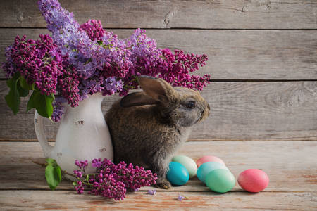 Rabbit with Easter eggs and lilac