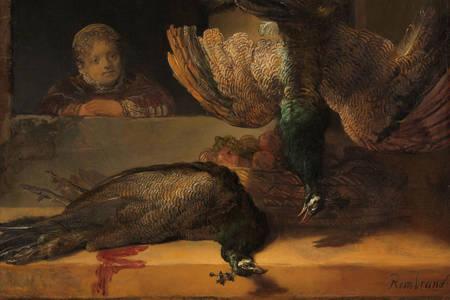"""Rembrandt Harmenszoon Van Rijn: """"Naturaleza muerta con dos pavos reales"""""""