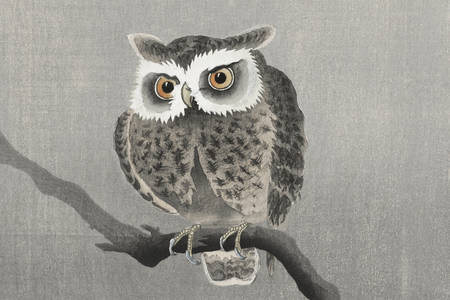 "Ohara Koson: ""Long-eared owl on bare tree branch"""