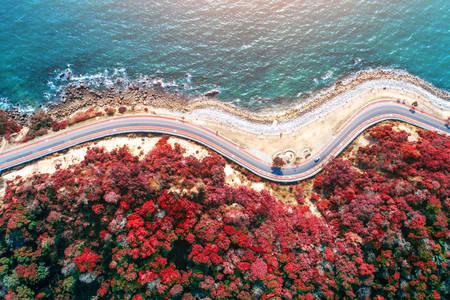 Вид сверху на дорогу вдоль побережья