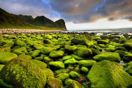 Norveç'in doğal manzarası
