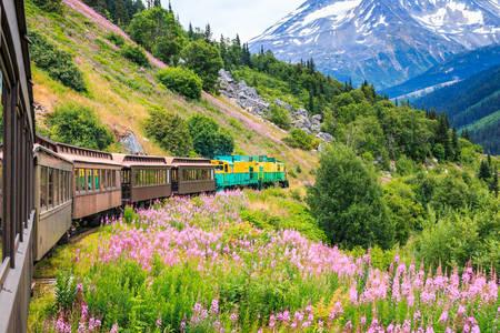 White Pass Railroad and Yukon Route