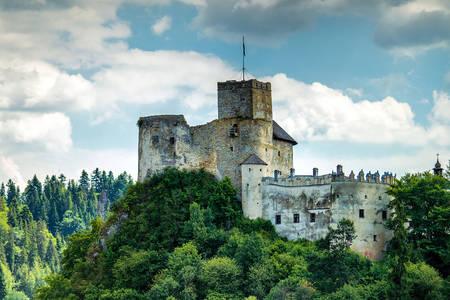 Château de Nedzice