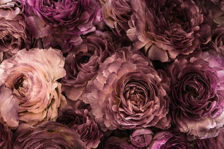 Bouquet di peonie viola