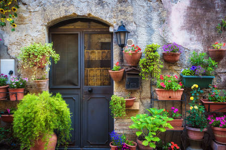 Facade in pots with flowers