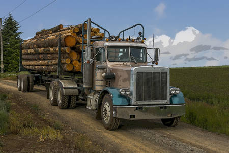Timber truck on the road