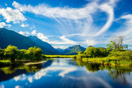 Lake pitt lake