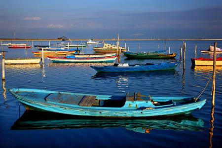 Wooden greek fishing boats