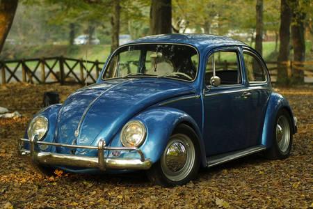 Samochód w parku jesienią