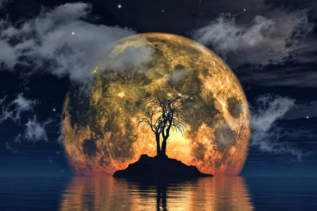 Tree on the background of the big moon