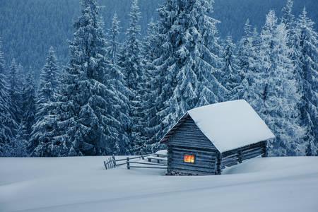 Casa de madeira em floresta de inverno
