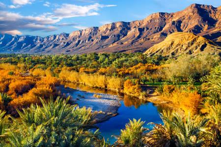 Desert oasis of Morocco