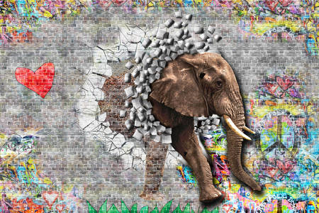 Elephant graffiti on the wall