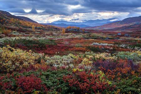 Švédske kopce