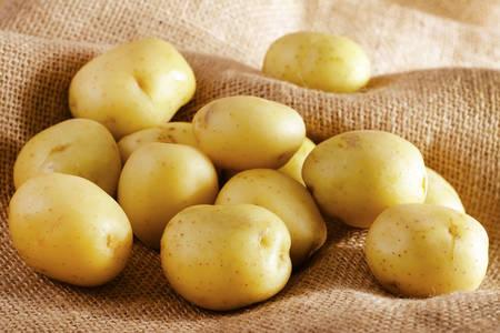 Krompir na burlapu