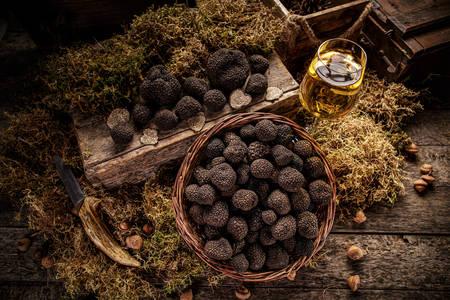 Mushrooms black truffles