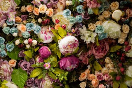 Květinová zeď