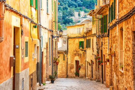 Valldemosa village street